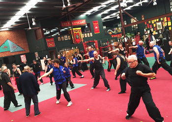 Kung Fu Session in Action image