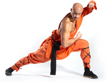Want to learn Kung Fu? Try our new online courses